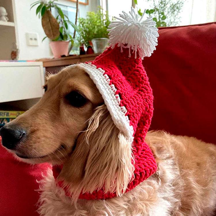 Gorro de crochê pra cachorro de Natal